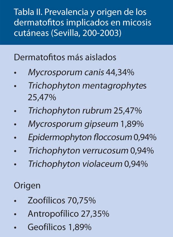 Tabla II. Prevalencia y origen de los dermatofitos implicados en micosis cutáneas (Sevilla, 200-2003)
