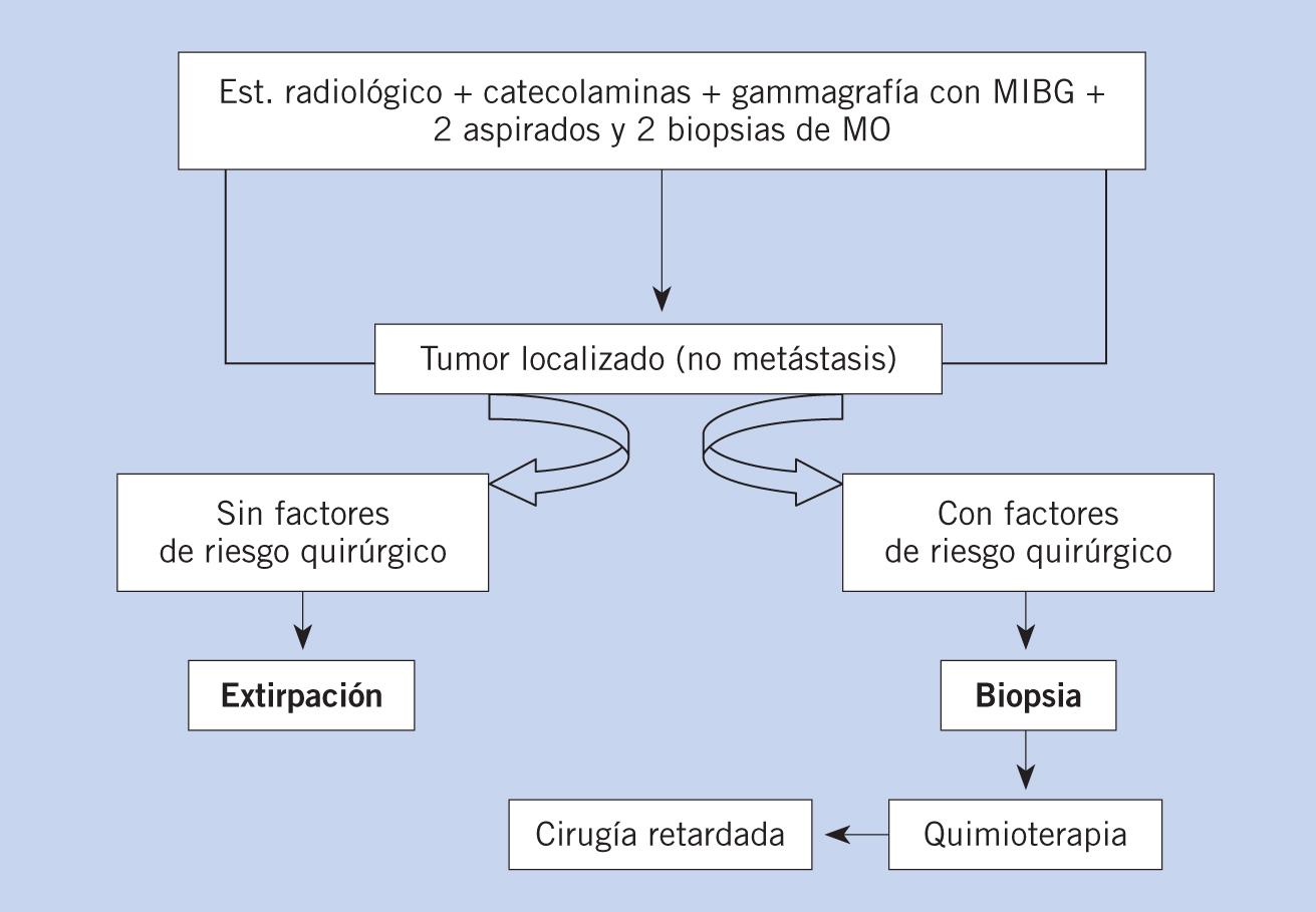 cáncer de próstata con metástasis óseas individuales y calendario de quimioterapia