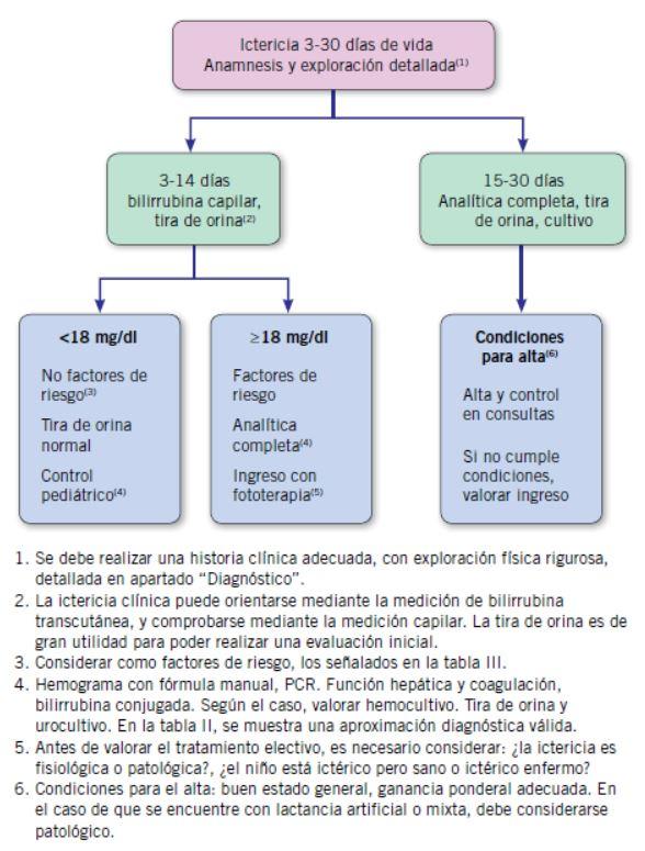 Figura 2 Algoritmo Del Tratamiento De Las Convulsiones Neonatales ...
