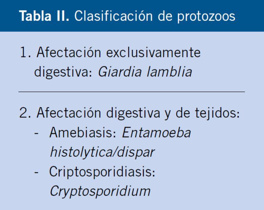 clasificacion de los parasitos del hombre