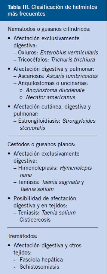 Los parásitos en el organismo humano