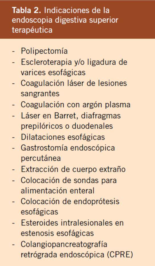 ¿cuál es la diferencia entre gastroscopia y endoscopia
