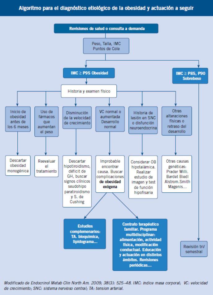diabetes de inicio en la madurez de la fisiopatología joven de la depresión