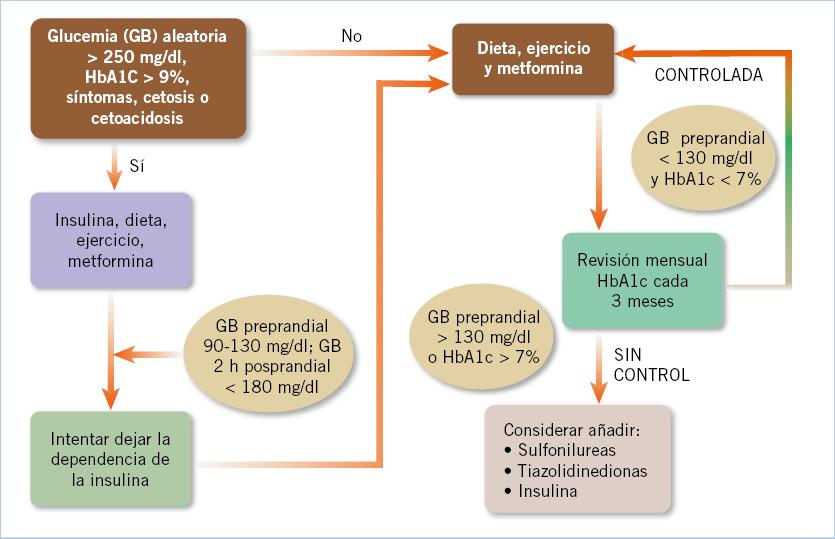 diabetes tipo 2 pre-diabetes y el síndrome metabólico