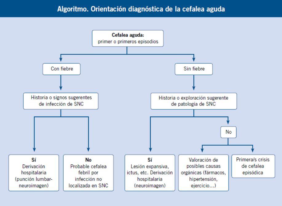 Hidrocefalia externa benigna una revisión con énfasis en el manejo