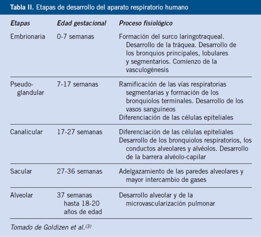 Factores ambientales y patología respiratoria del niño
