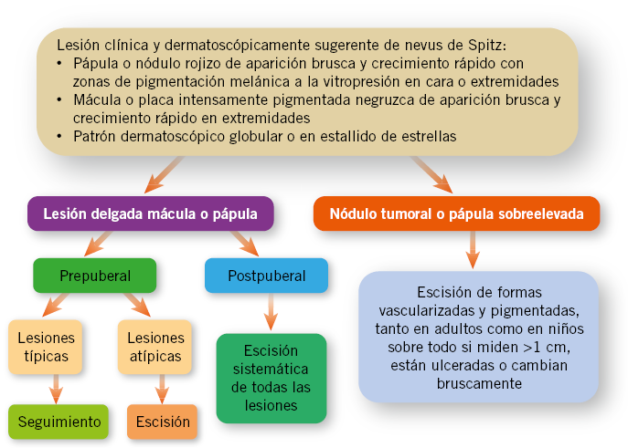 Trastornos de la pigmentación: lentigos, nevus y melanoma ...