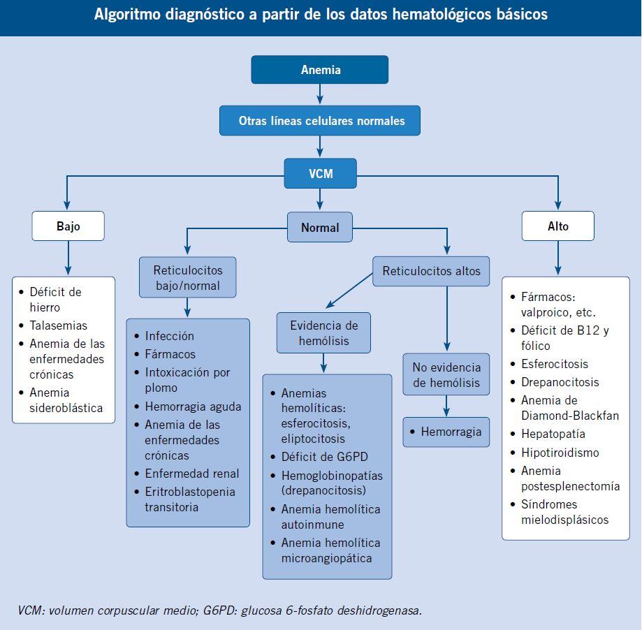 Anemias en la infancia y adolescencia. Clasificación y diagnóstico