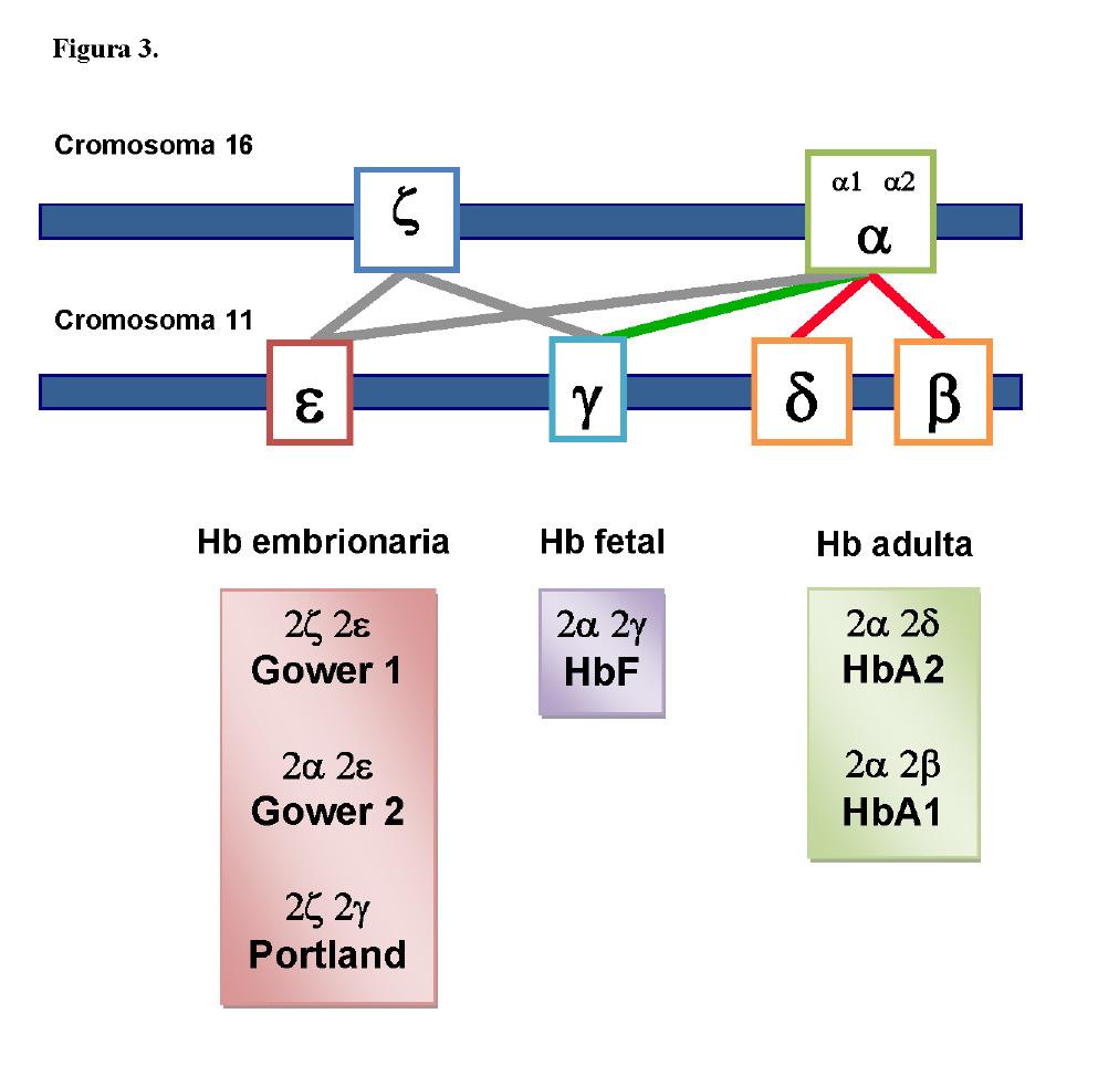 Anemias Hemolíticas En La Infancia