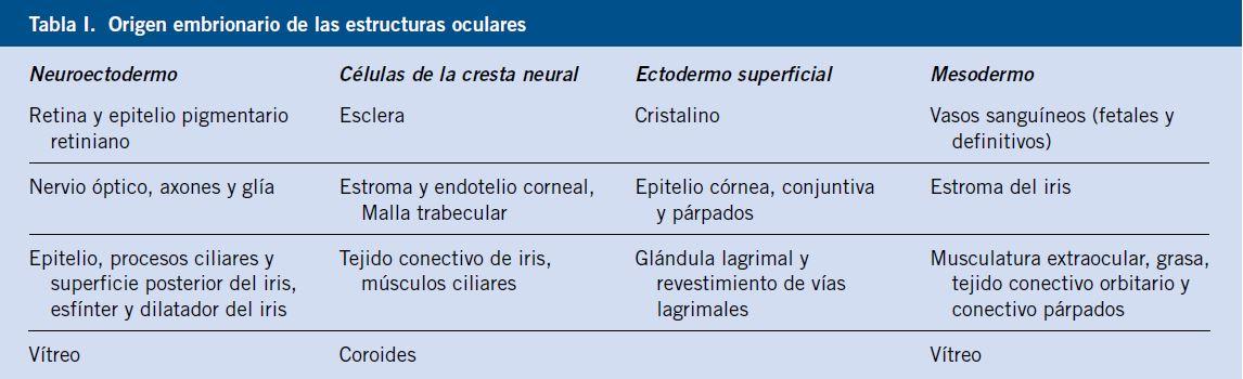 Patología congénita ocular
