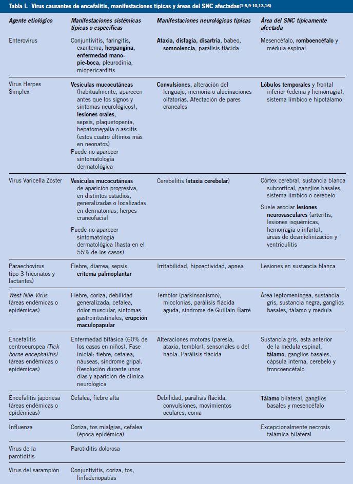 enfermedades causadas por virus conclusion